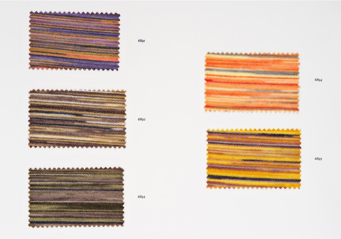 AI22 Cartella Colore - Arkaba Print